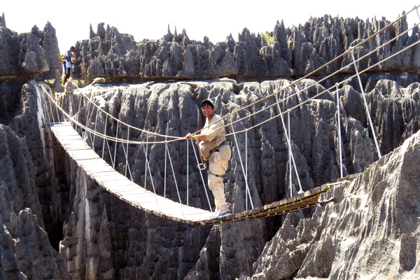 The bridge of the Tsingy of Bemaraha